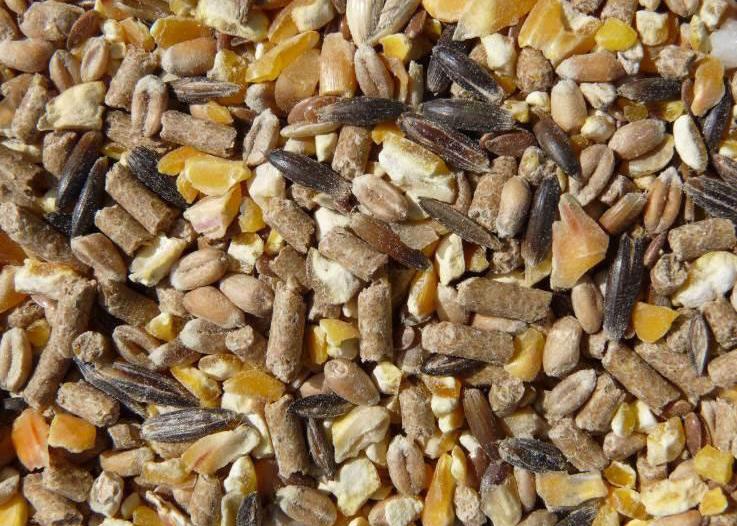 Mélange de céréales et granulés